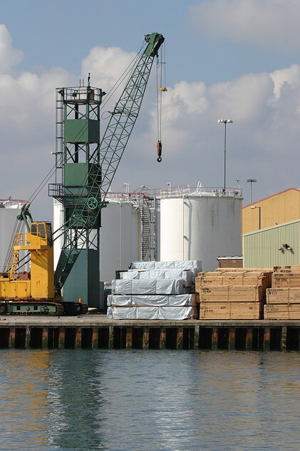 Port warehouse in Trieste/Italy: Oversea export of logs and timber
