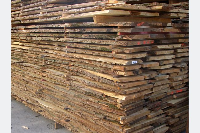 Imholz Robinienholz