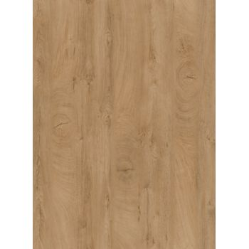 kaindl nischenr ckwand eiche endgrain cognac k5413 aw. Black Bedroom Furniture Sets. Home Design Ideas