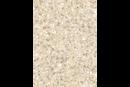 Sahara MS