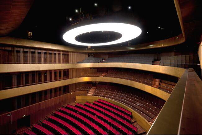 Projekat: Pozorište Linz © Sigrid Rauchdobler