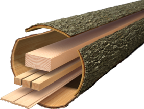 lemn_constructii_nav