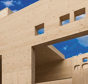 lemn_constructii