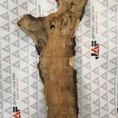 Слэбы из дуба, карагача, ясеня, бука, ореха, вишни и других пород дерева